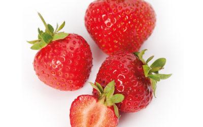 Schokolade-Erdbeeren mit Haselnuss-Öl